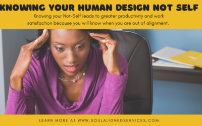 Knowing your Human Design Not-Self